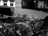 Bergen_op_Zoom_koel-helder_water.jpg