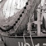Eemshaven-No02.jpg