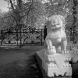 IR-film-No007-LQ.jpg