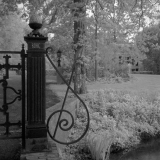 IR-film-No008-LQ.jpg