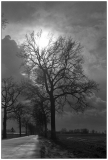 Leica_M3_062-1.jpg
