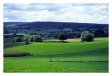 Limburg0123.jpg