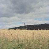 Sauerland_foto_nr_10.jpg