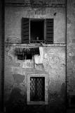 Siena0142.jpg