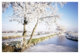 Winterpolder.jpg