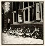 fietsen_in_Gouda.jpg