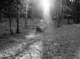 licht_2.jpg